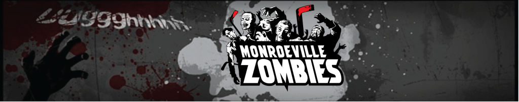 Zombies Banner